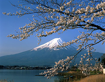 http://blogs.davenportlibrary.com/reference/wp-content/uploads/2008/05/mt-fuji.jpg