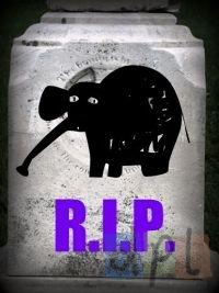 Elephant Tombstone