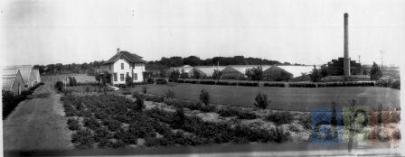 Davis Gardens, c. 1916