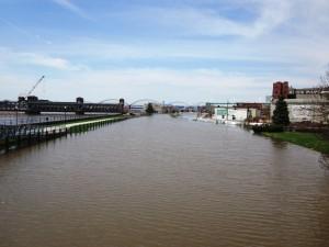 Flood Photos - 2013 138