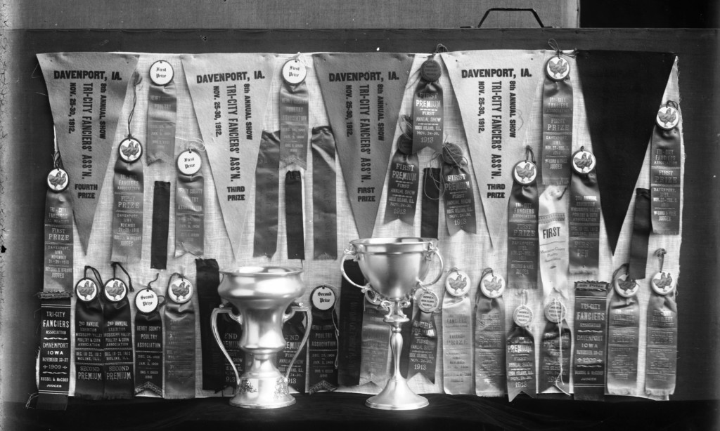 Photograph of awards that Mr. Emil C. Boniger won for his chickens. The collection of ribbons, trophies, and pennants date between 1908 and 1913.